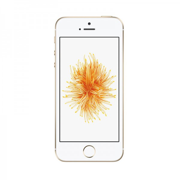 iPhone SE 16GB Gold | Tradeline Egypt Apple